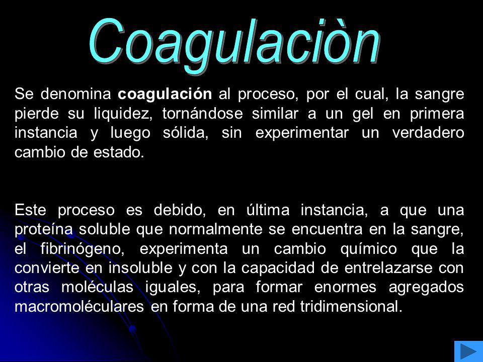 Coagulaciòn