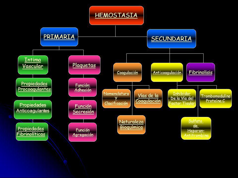 HEMOSTASIA PRIMARIA SECUNDARIA Intima Vascular Plaquetas Fibrinolisis