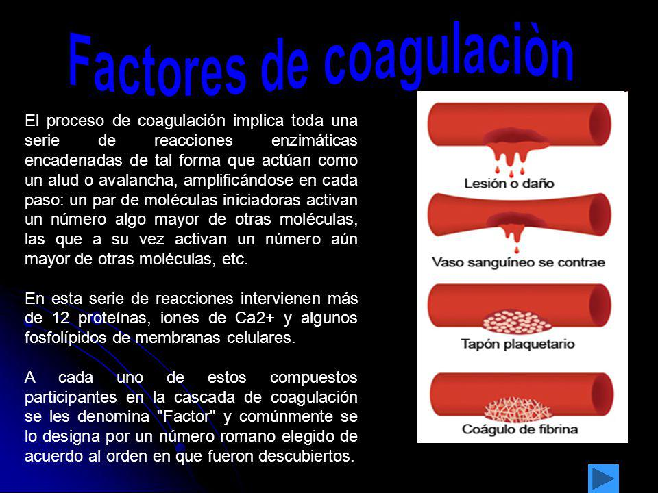 Factores de coagulaciòn