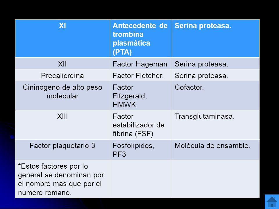 Cininógeno de alto peso molecular