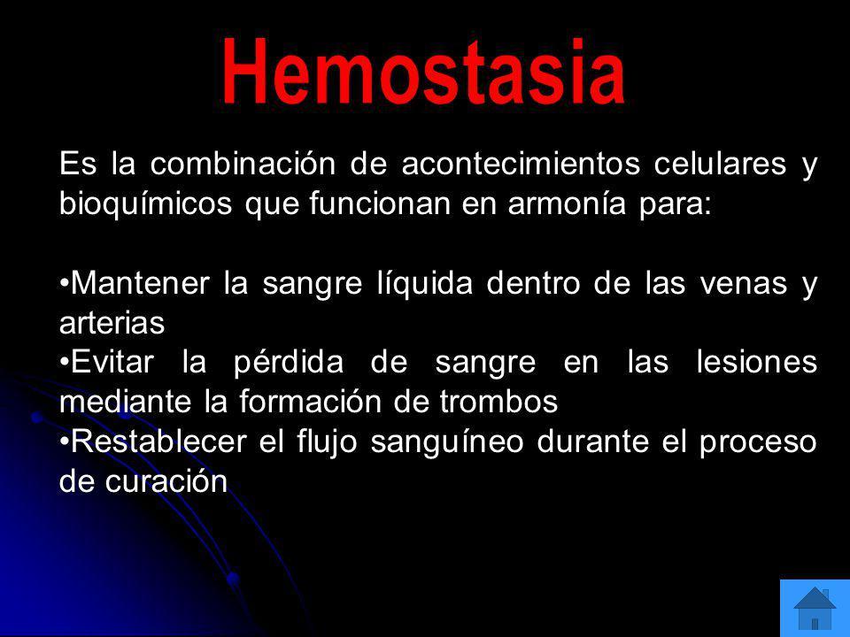 Hemostasia Es la combinación de acontecimientos celulares y bioquímicos que funcionan en armonía para: