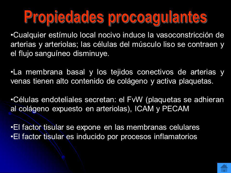 Propiedades procoagulantes