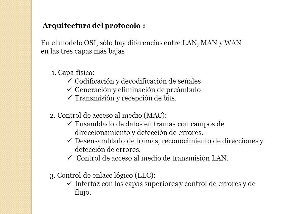 Arquitectura del protocolo :