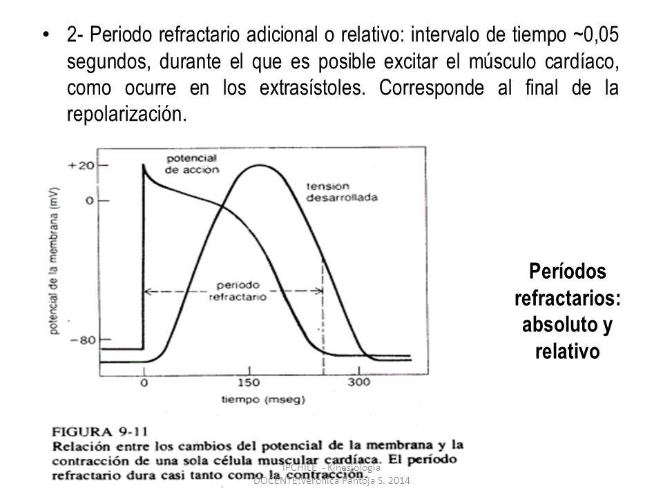 Períodos refractarios: absoluto y relativo