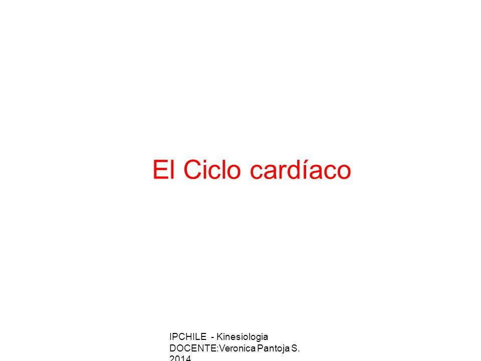 El Ciclo cardíaco IPCHILE - Kinesiologia DOCENTE:Veronica Pantoja S. 2014