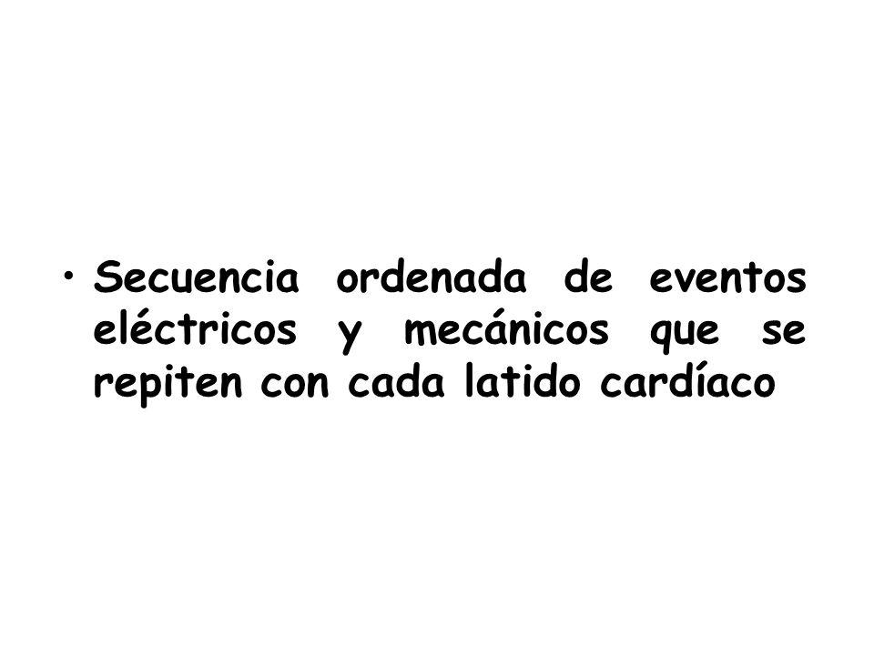IPCHILE - Kinesiologia DOCENTE:Veronica Pantoja S. 2014
