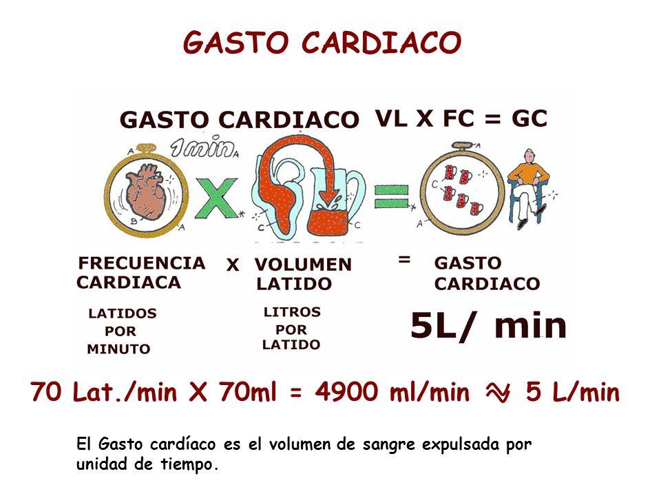 GASTO CARDIACO 70 Lat./min X 70ml = 4900 ml/min 5 L/min