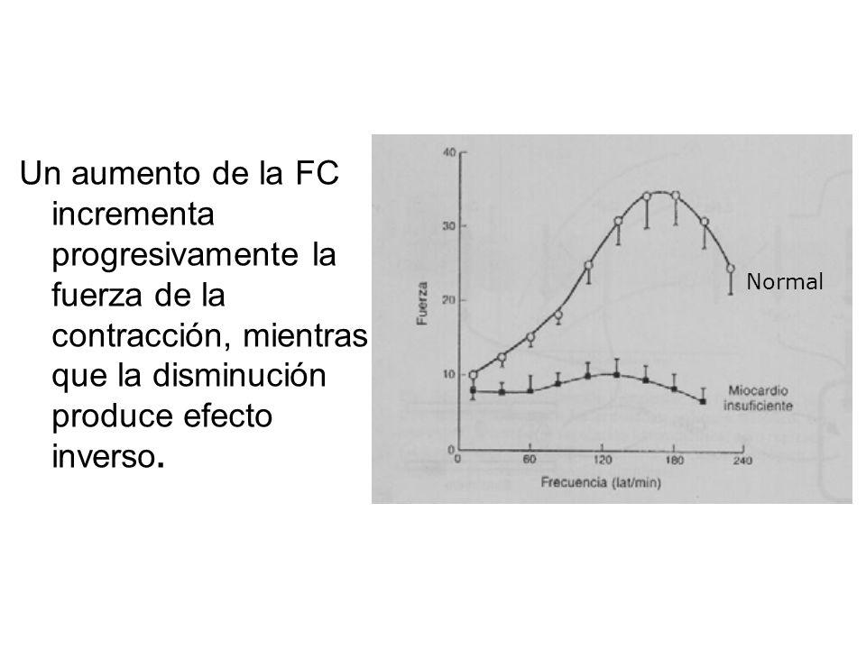 Un aumento de la FC incrementa progresivamente la fuerza de la contracción, mientras que la disminución produce efecto inverso.