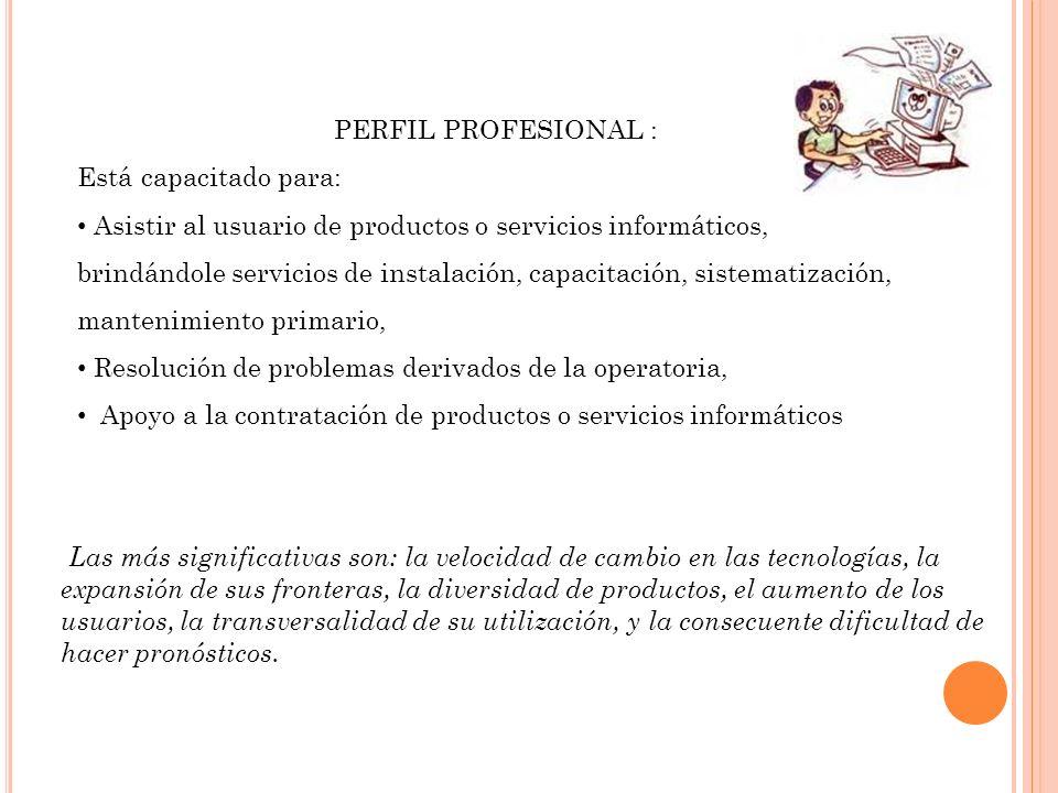 PERFIL PROFESIONAL : Está capacitado para: