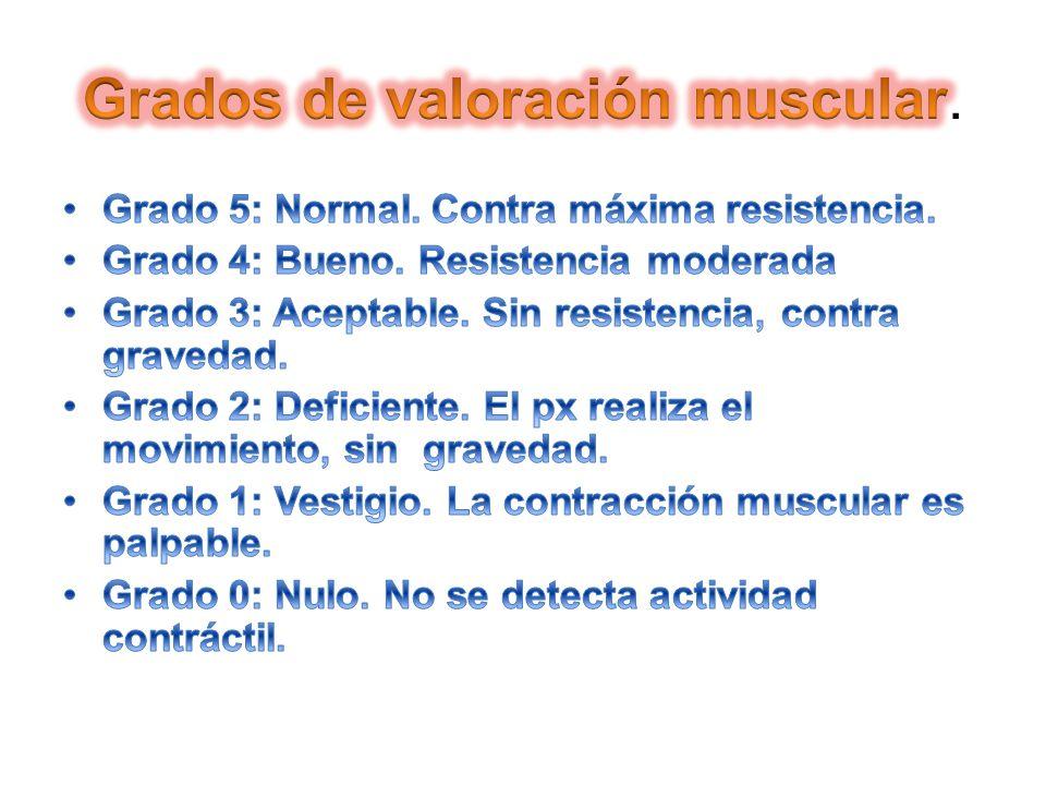 Grados de valoración muscular.