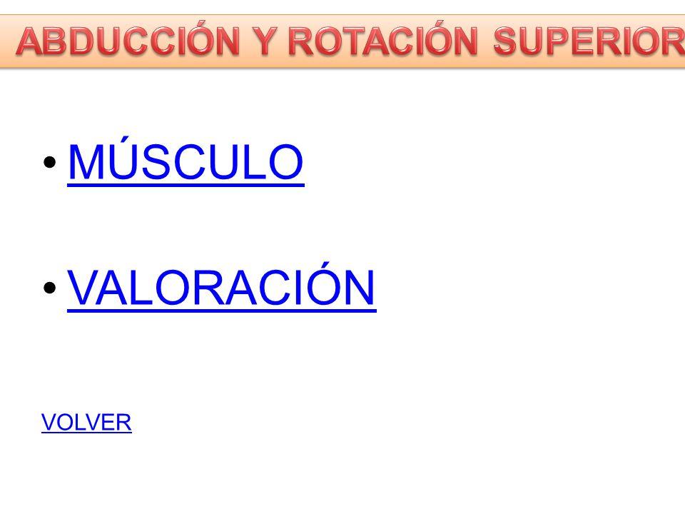 ABDUCCIÓN Y ROTACIÓN SUPERIOR