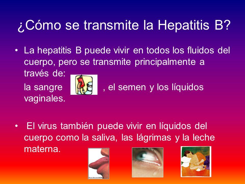 ¿Cómo se transmite la Hepatitis B
