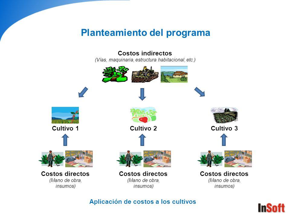 Planteamiento del programa Aplicación de costos a los cultivos
