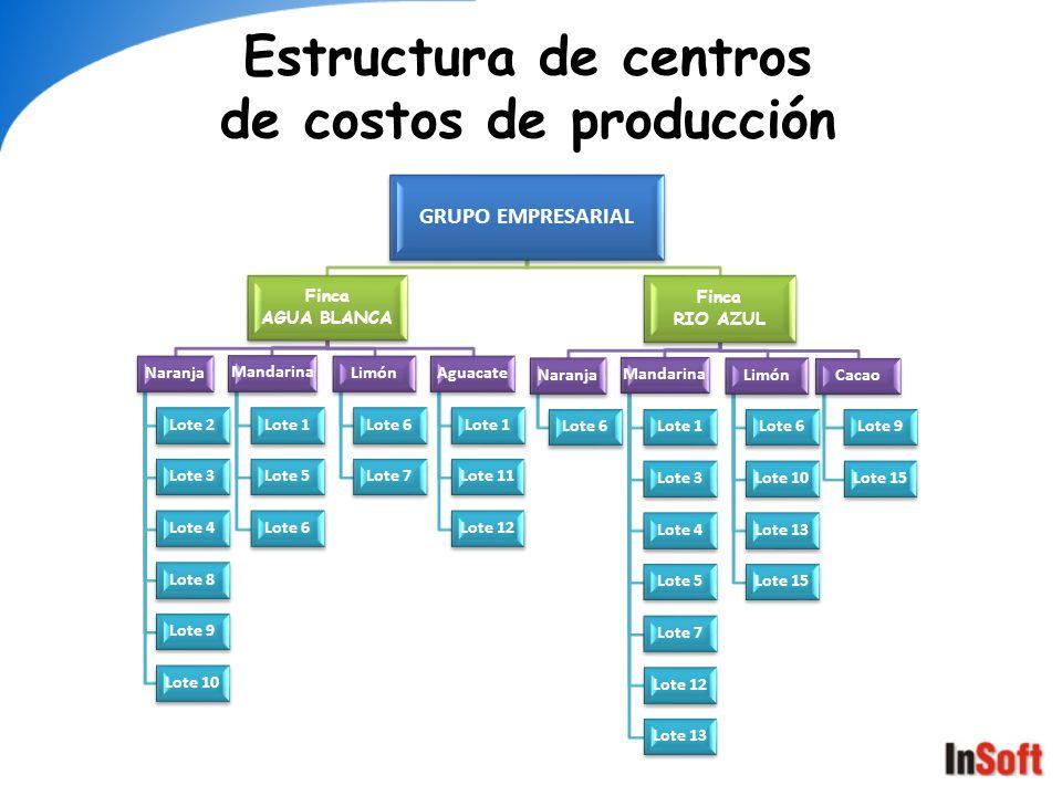 Estructura de centros de costos de producción