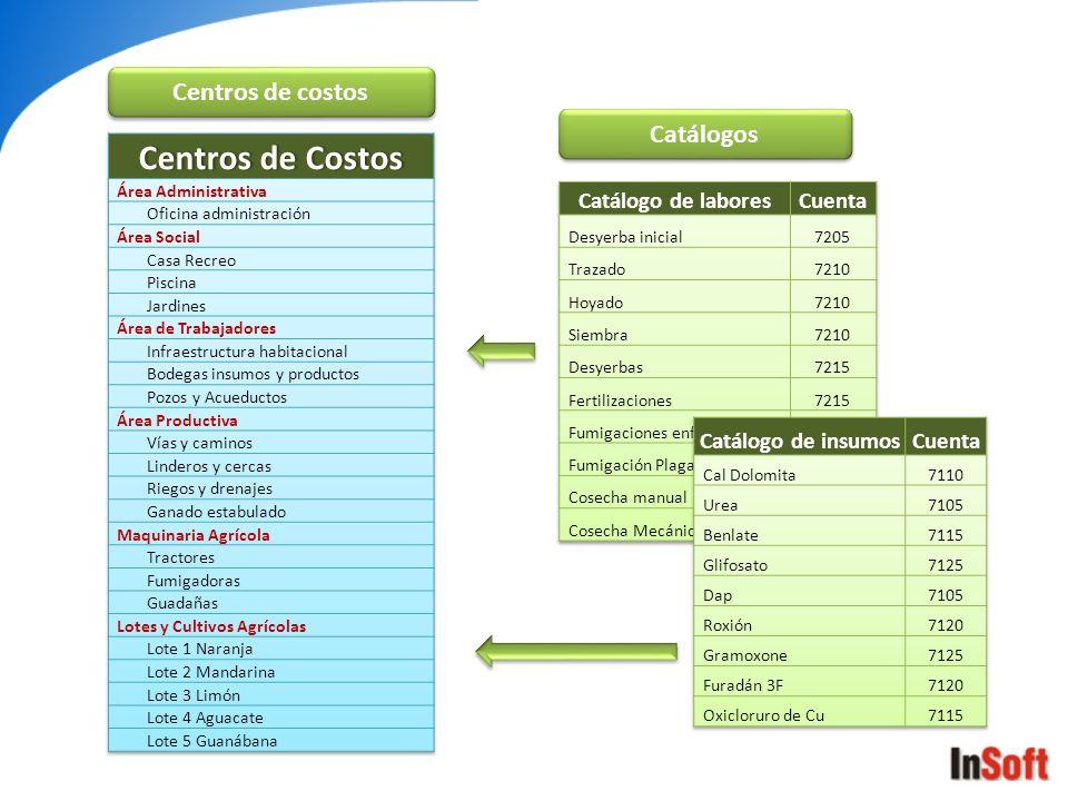 Centros de Costos Centros de costos Catálogos Catálogo de labores