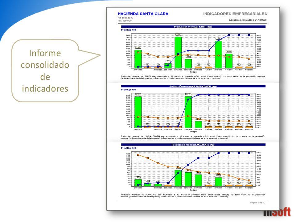 Informe consolidado de indicadores