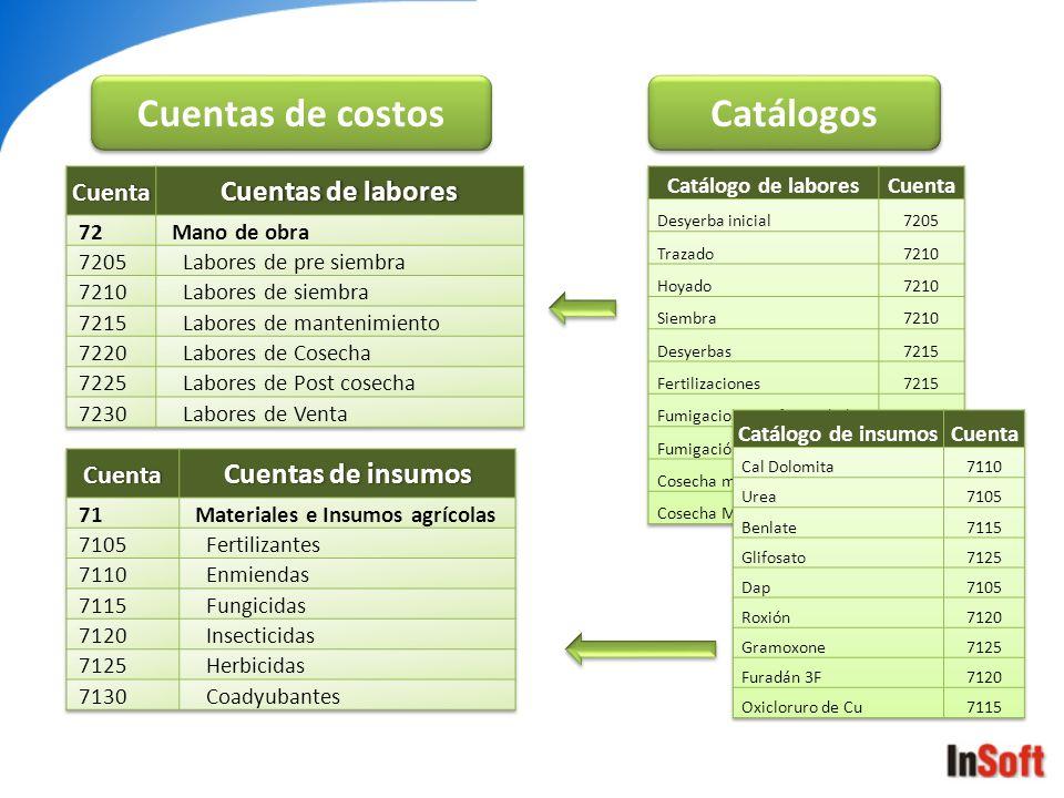 Cuentas de costos Catálogos