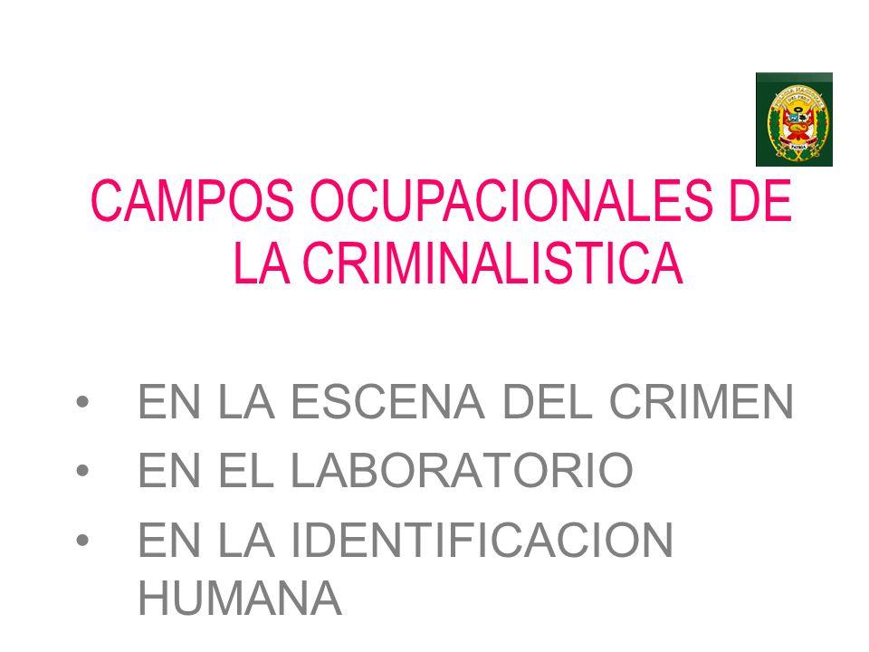 CAMPOS OCUPACIONALES DE LA CRIMINALISTICA