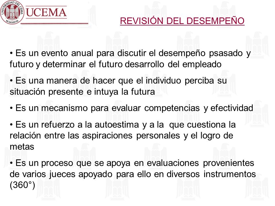 REVISIÓN DEL DESEMPEÑO