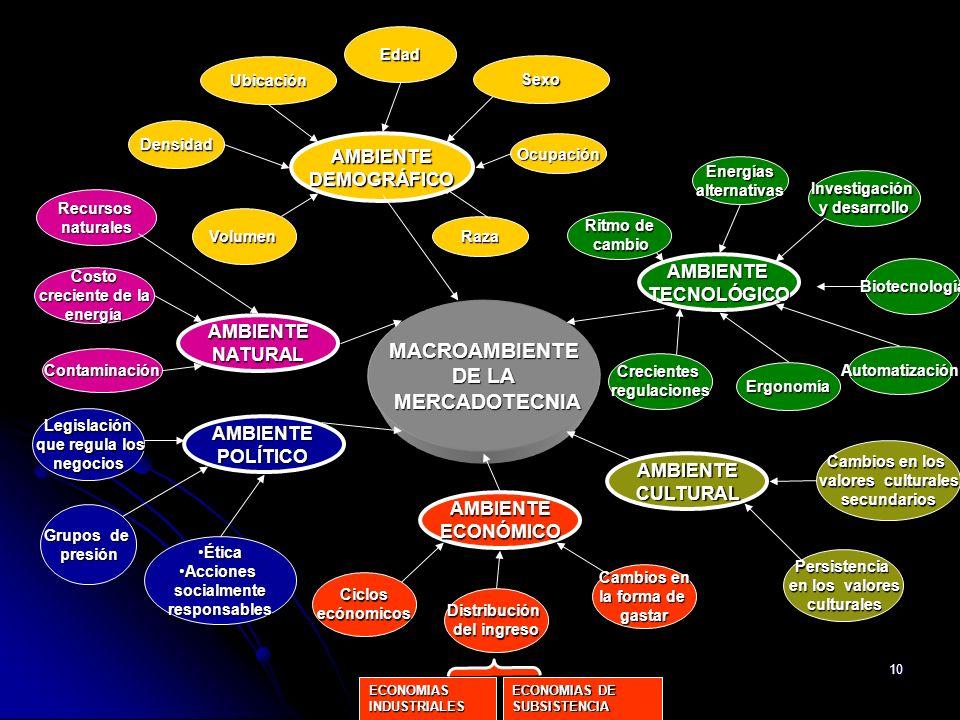 MACROAMBIENTE DE LA MERCADOTECNIA