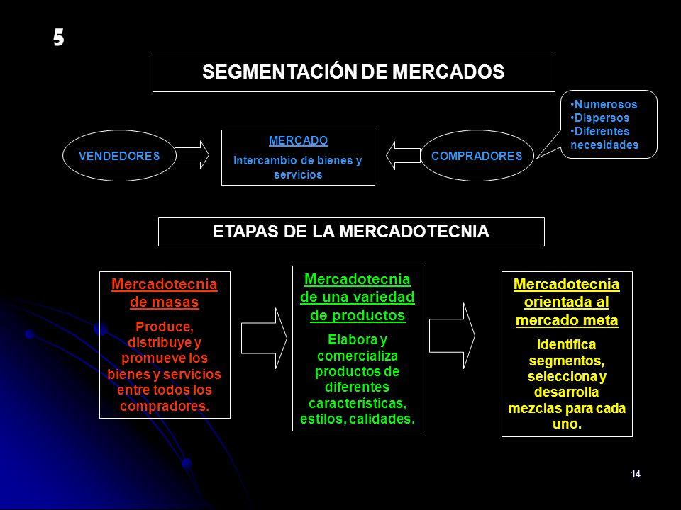 5 SEGMENTACIÓN DE MERCADOS ETAPAS DE LA MERCADOTECNIA