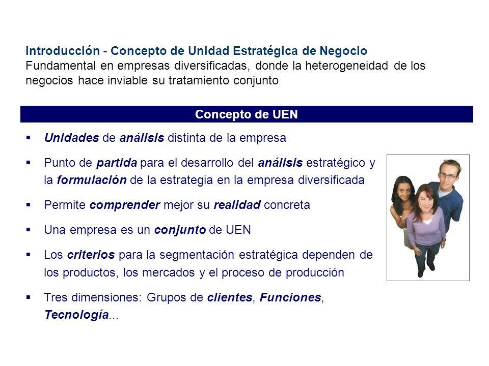 Introducción - Concepto de Unidad Estratégica de Negocio