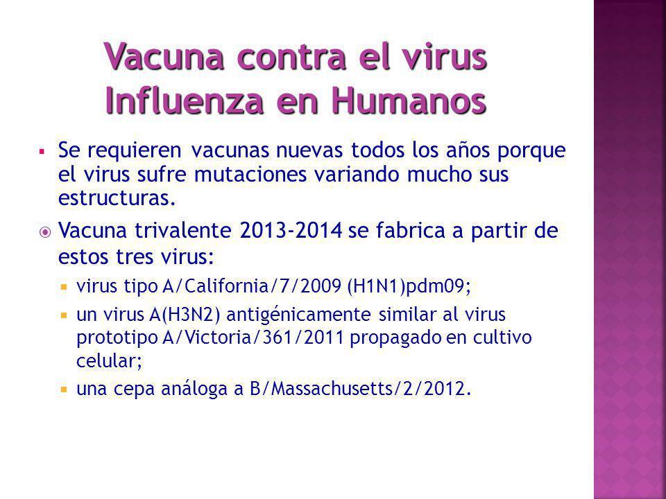 Vacuna contra el virus Influenza en Humanos