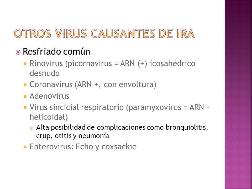 Otros virus causantes de IRA