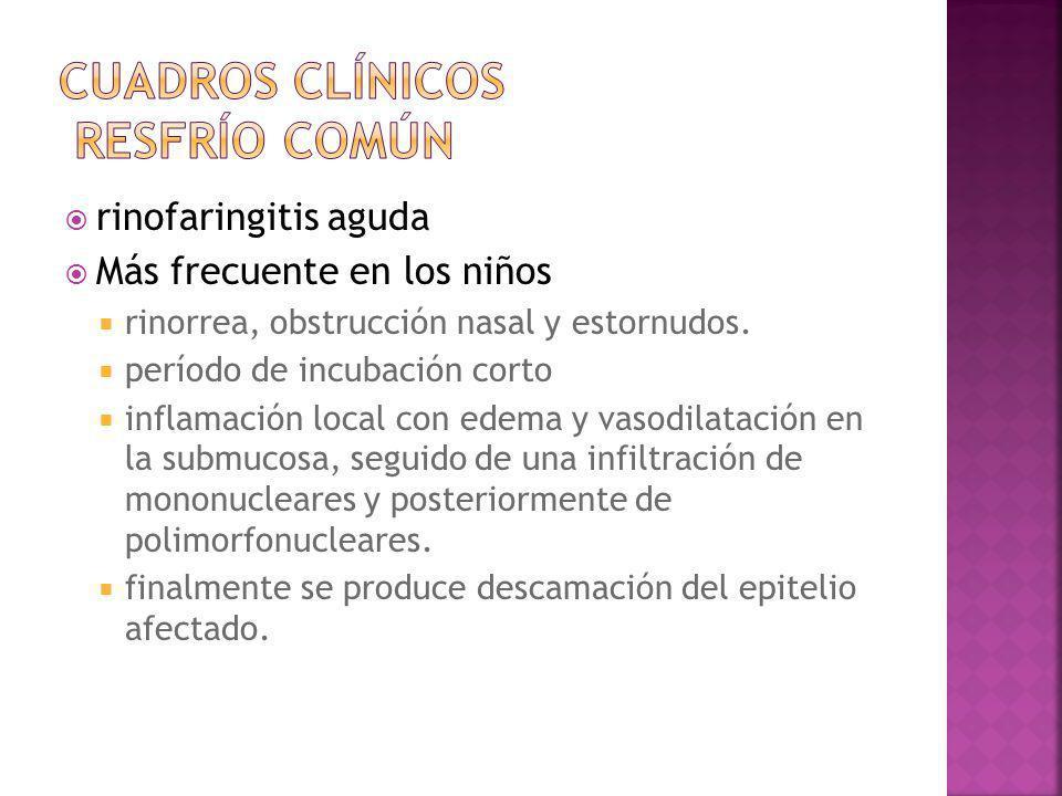 Cuadros clínicos resfrío común