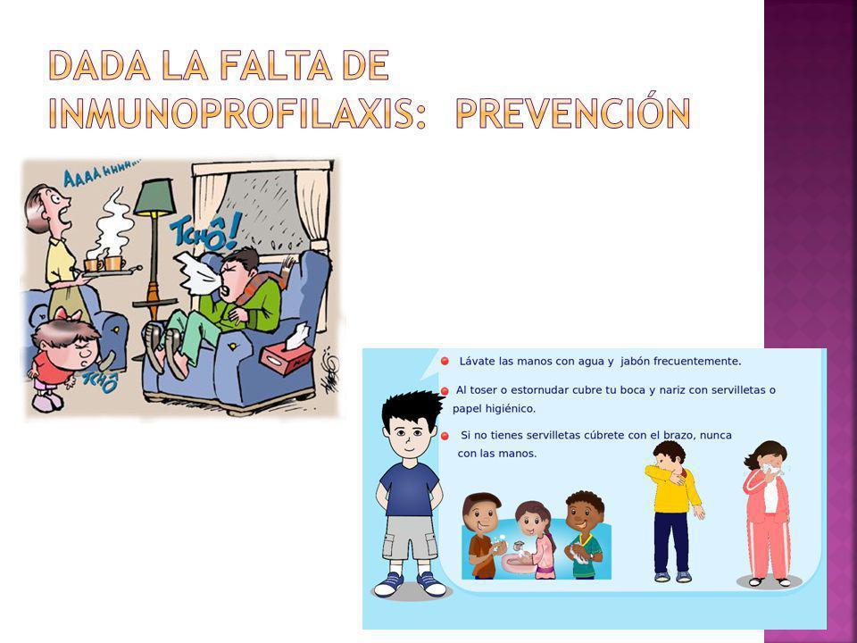 Dada la falta de inmunoprofilaxis: prevención