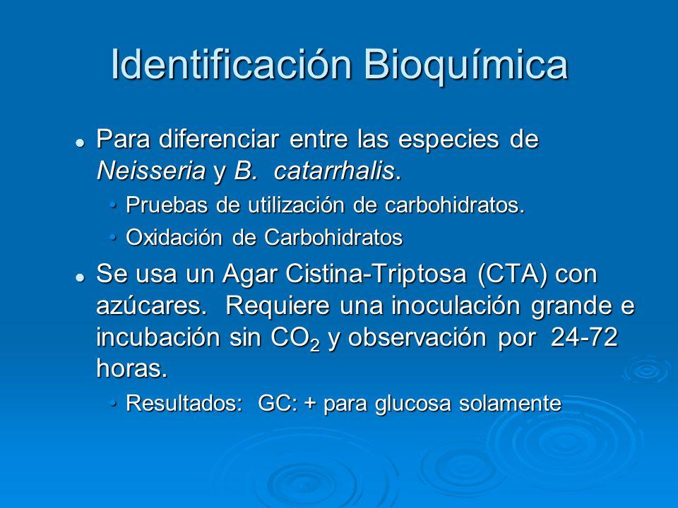 Identificación Bioquímica