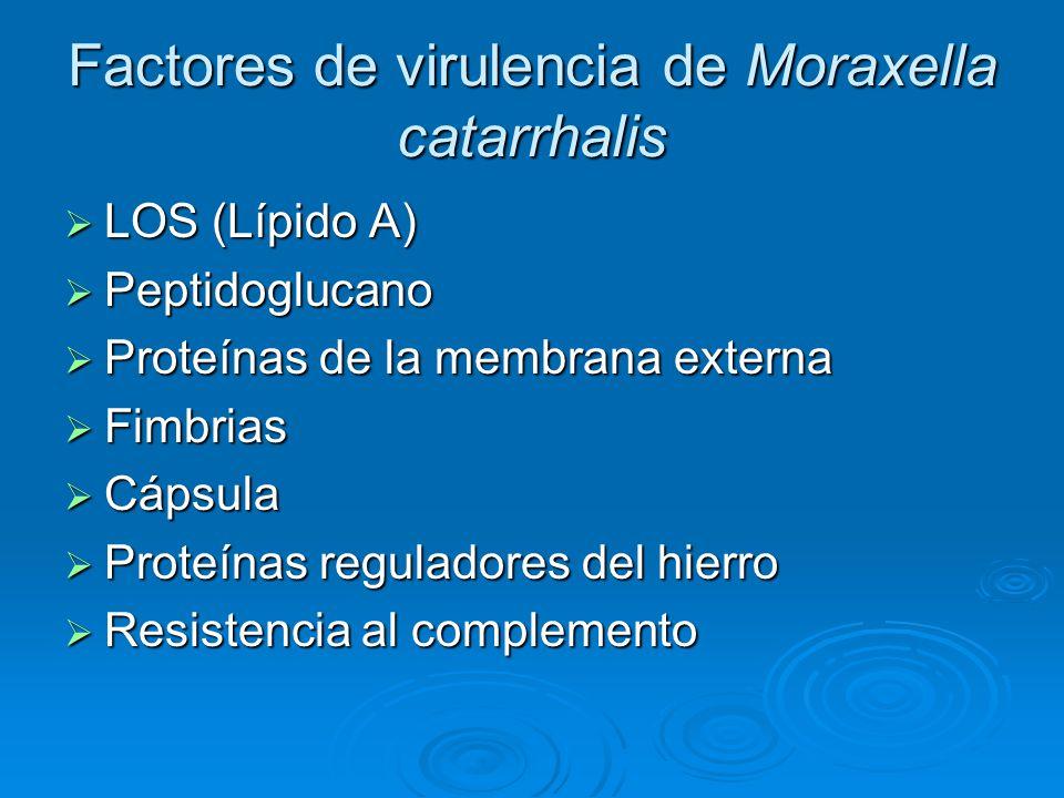 Factores de virulencia de Moraxella catarrhalis