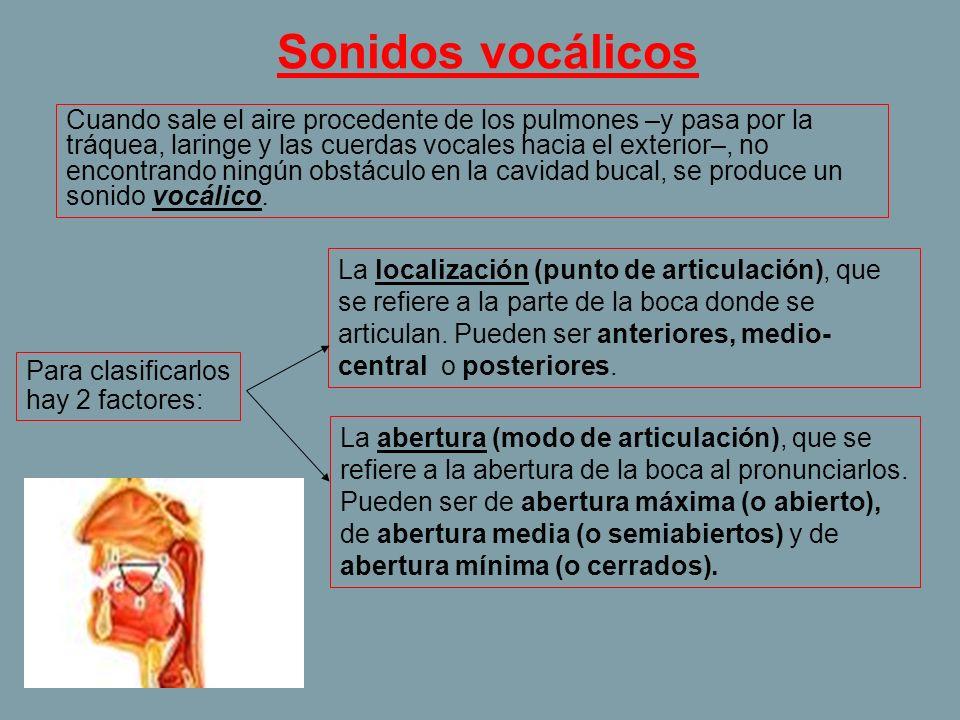 Sonidos vocálicos