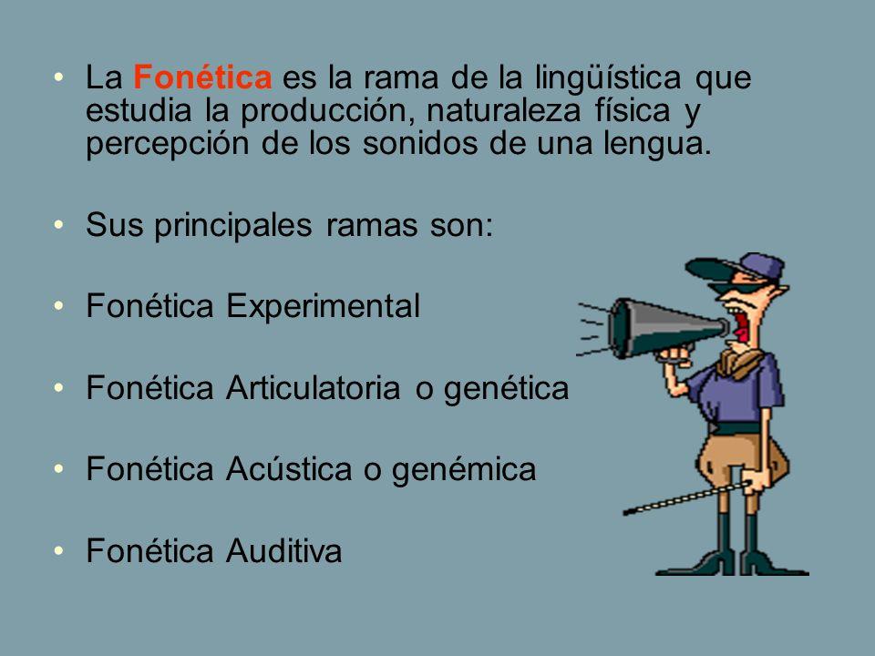 La Fonética es la rama de la lingüística que estudia la producción, naturaleza física y percepción de los sonidos de una lengua.