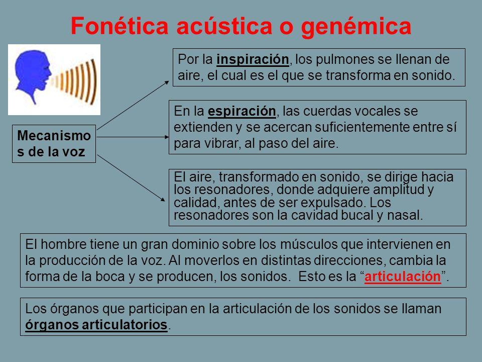 Fonética acústica o genémica