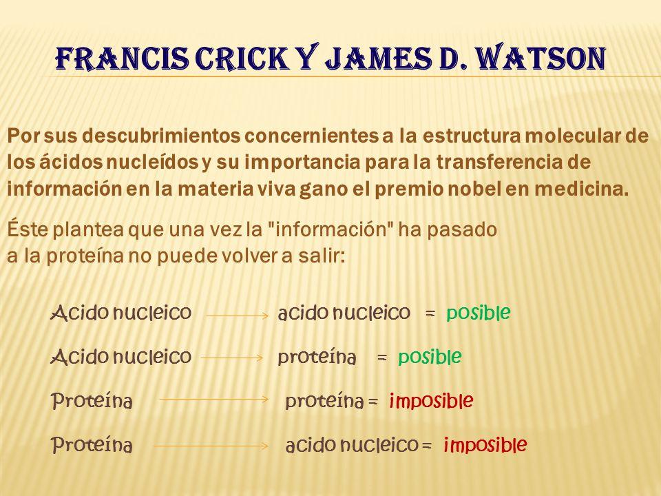 Francis Crick y James D. Watson