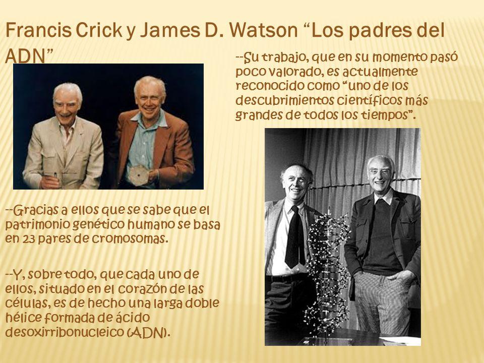 Francis Crick y James D. Watson Los padres del ADN