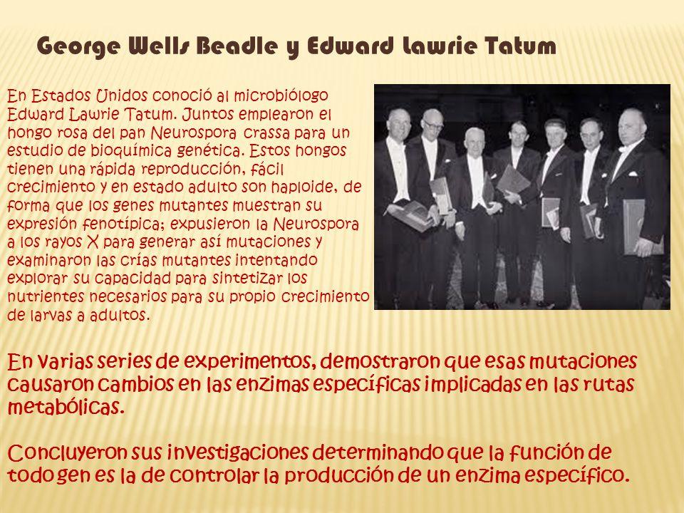 George Wells Beadle y Edward Lawrie Tatum