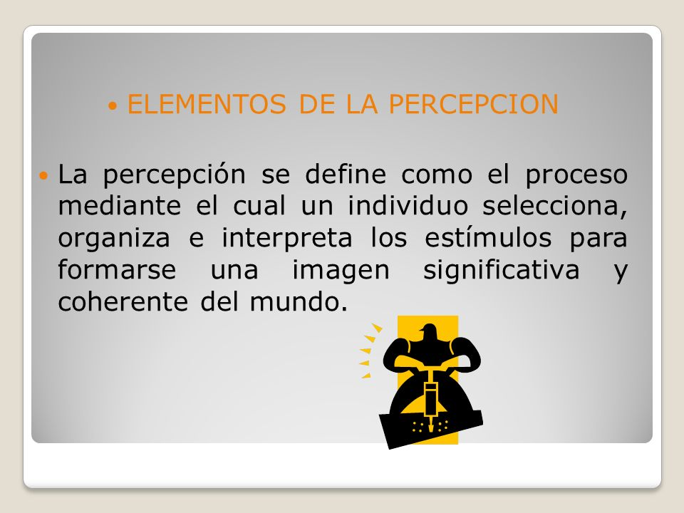 ELEMENTOS DE LA PERCEPCION