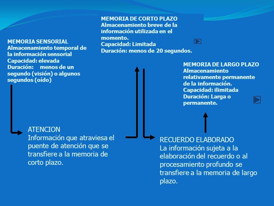 MEMORIA DE CORTO PLAZO Almacenamiento breve de la información utilizada en el momento. Capacidad: Limitada.