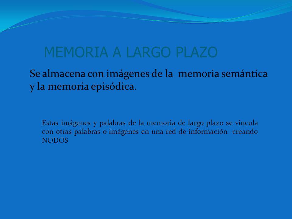 MEMORIA A LARGO PLAZOSe almacena con imágenes de la memoria semántica y la memoria episódica.