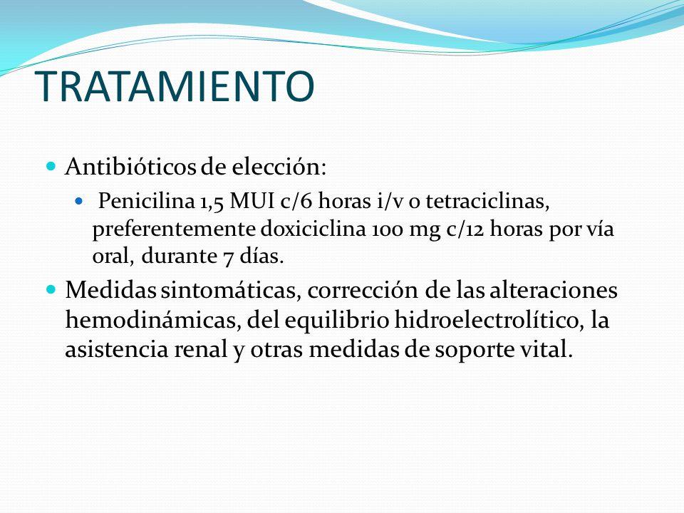 TRATAMIENTO Antibióticos de elección: