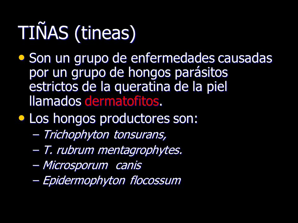 TIÑAS (tineas) Son un grupo de enfermedades causadas por un grupo de hongos parásitos estrictos de la queratina de la piel llamados dermatofitos.