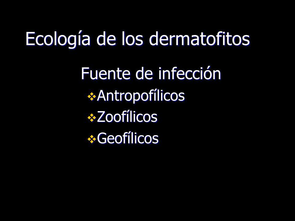 Ecología de los dermatofitos