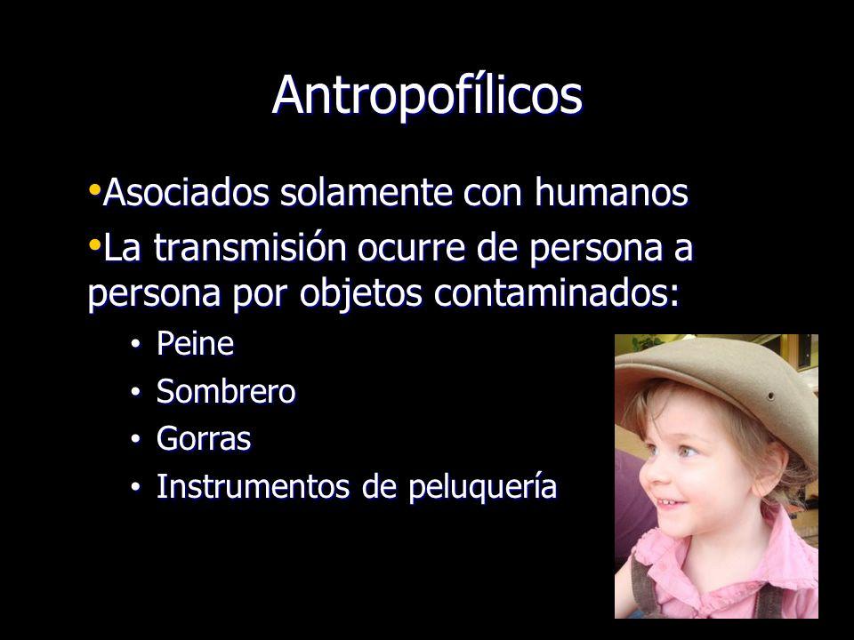 Antropofílicos Asociados solamente con humanos