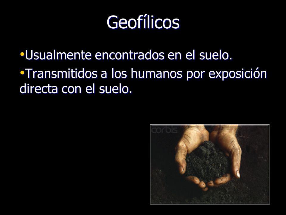 Geofílicos Usualmente encontrados en el suelo.