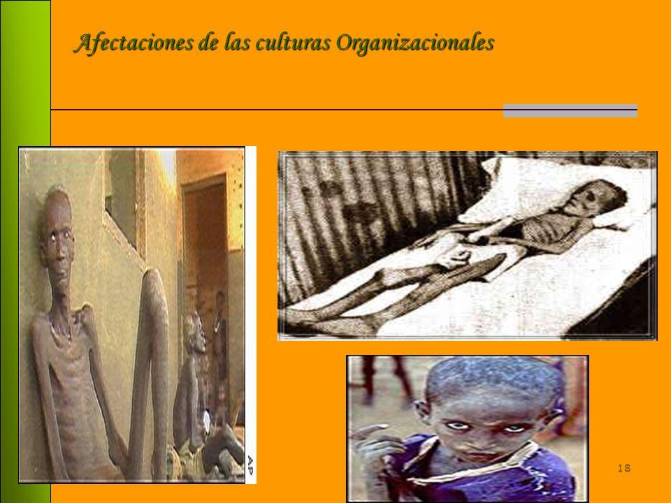 Afectaciones de las culturas Organizacionales