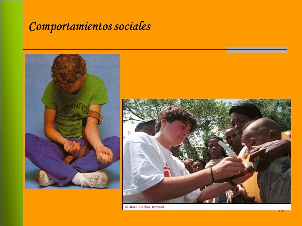Comportamientos sociales