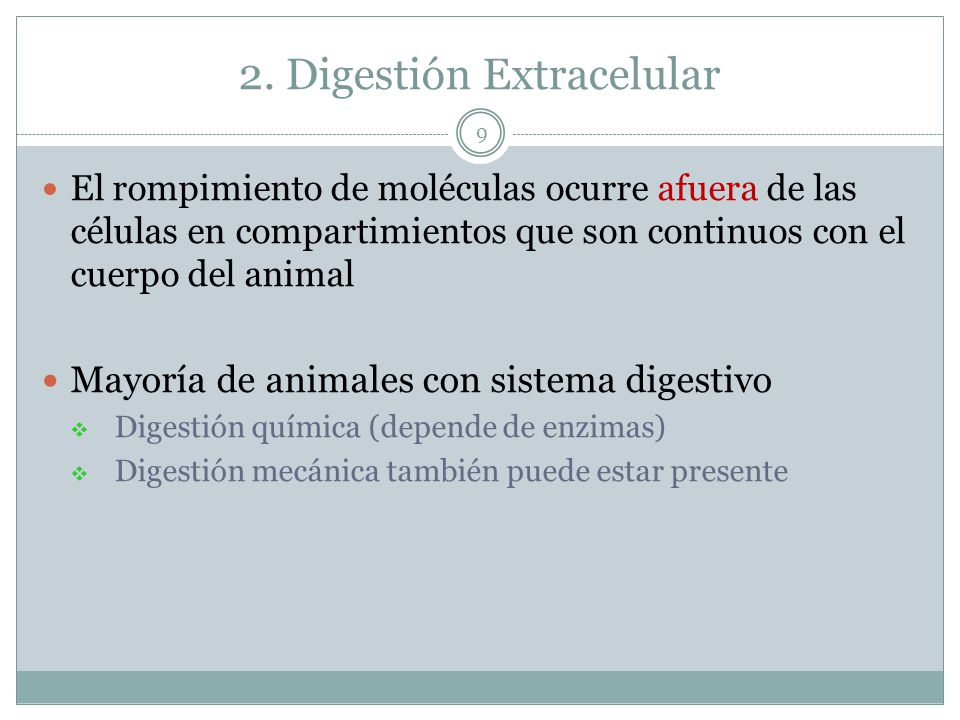 2. Digestión Extracelular