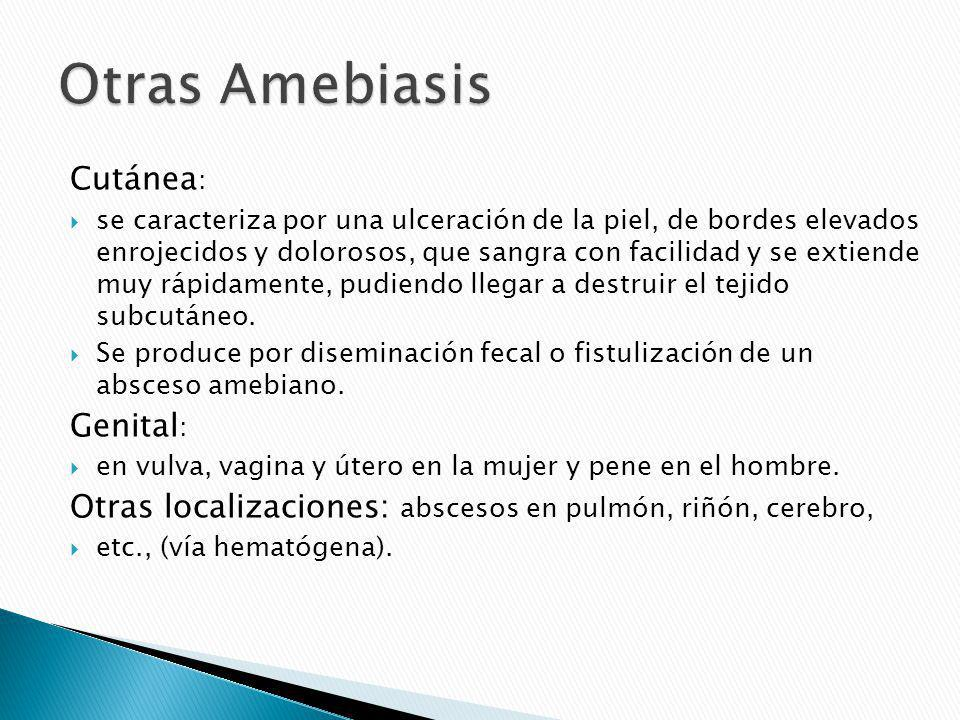 Otras Amebiasis Cutánea: Genital: